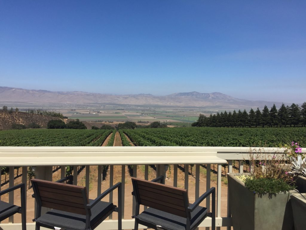 Great view from outside the Hahn Estates Winery.