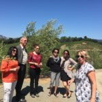 Wine Tour Benziger Winery #Benzigerwinery #napa