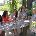 Wine Tour and Tasting Napa California #thecrazywineladies
