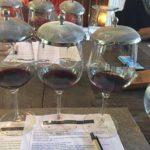 Benziger Winery Tasting #thecrazywineladies
